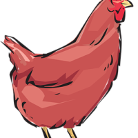 Red Hen: Setting the record straight - Part 1 - elemi fuentes