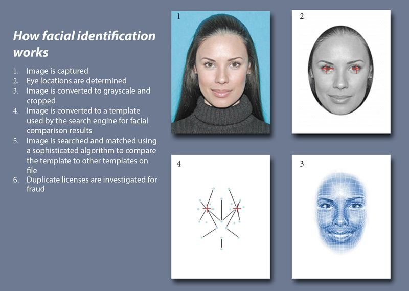 How facial recognition works - how facial identification works