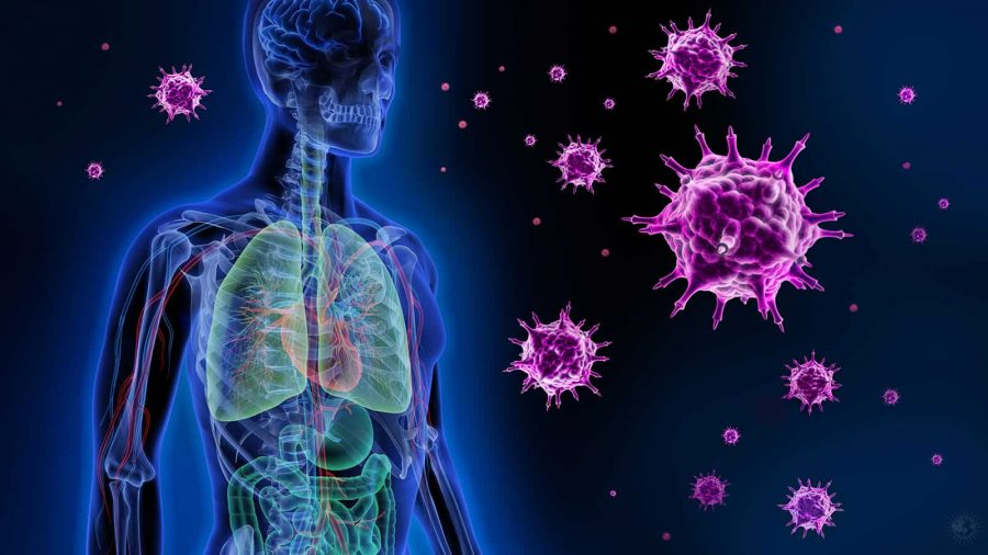 Researchers-Reveal-a-Technique-That-Can-Prevent-Viruses-in-Human-Cells-1 - the new virus in town - elemi fuentes